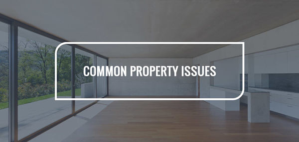 Common Property Issues